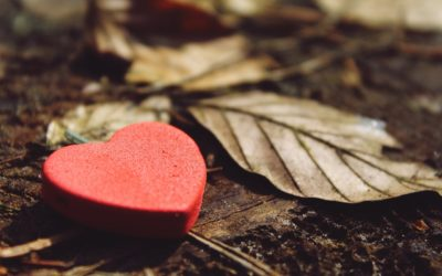 Gratitud, la clave de la felicidad